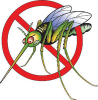 "Remember 4 ""D's"" to protect yourself from West Nile Disease"