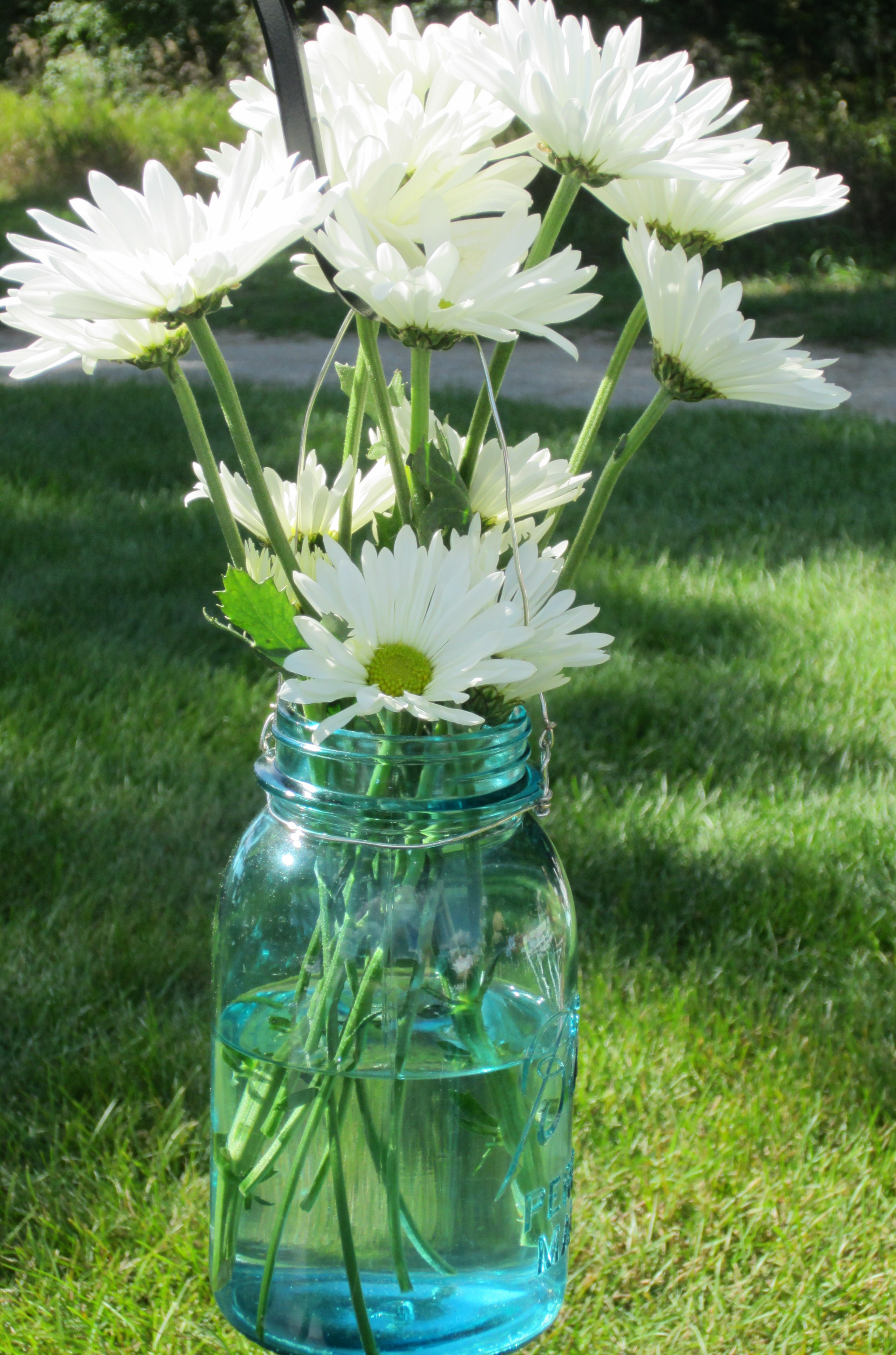 A blue mason jar with daisies hung from