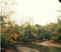 Secluded 55.5 Acres in Southeastern Indiana