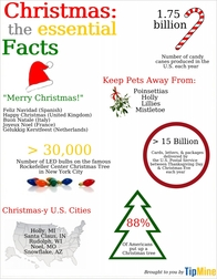 Everything You Need to Know About Christmas