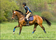 Event: Sally Sainsbury Jumping Clinic -- March 17