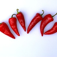 Make homemade chipotle chilis
