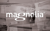 Magnolia CMS Review