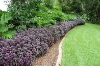 Garden Edging – Ways to Dress Up Your Landscape with Plants