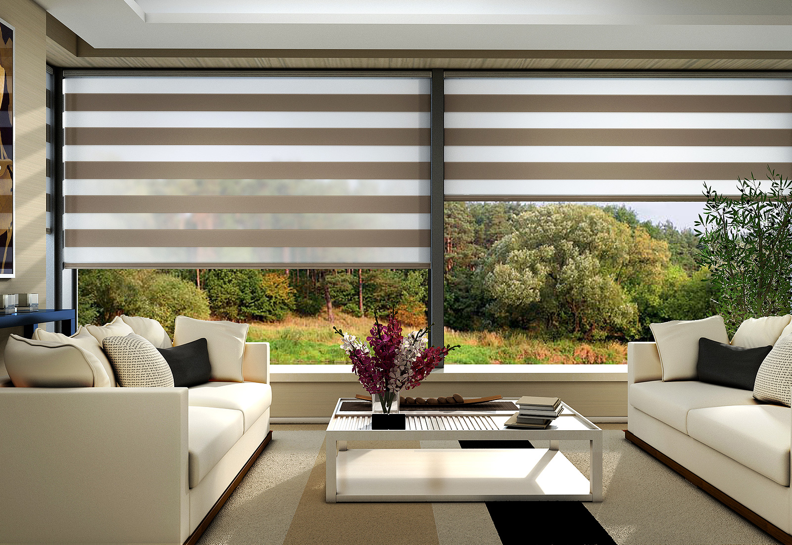 Fully Motorized Roller Blinds for your home!