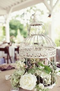 Bird Cages for Wedding